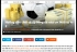 Video hướng dẫn cách chơi cá độ bóng đá M88 qua mạng