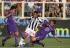 Soi kèo: Fiorentina Vs Udinese – VĐQG Italia- 02h45 ngày 12/02
