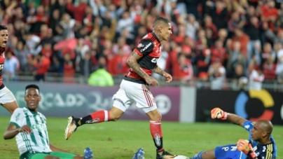 Soi kèo Palmeiras vs Flamengo, 07h00 ngày 14/07, VĐQG Brazil