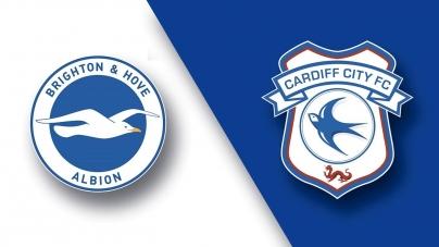 Soi kèo Brighton vs Cardiff City, 01h45 ngày 17/04, Ngoại hạng Anh