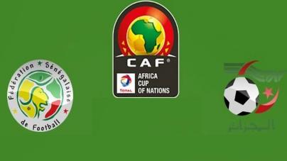 Soi kèo Senegal vs Algeria, 02h00 ngày 20/07, CAN 2019